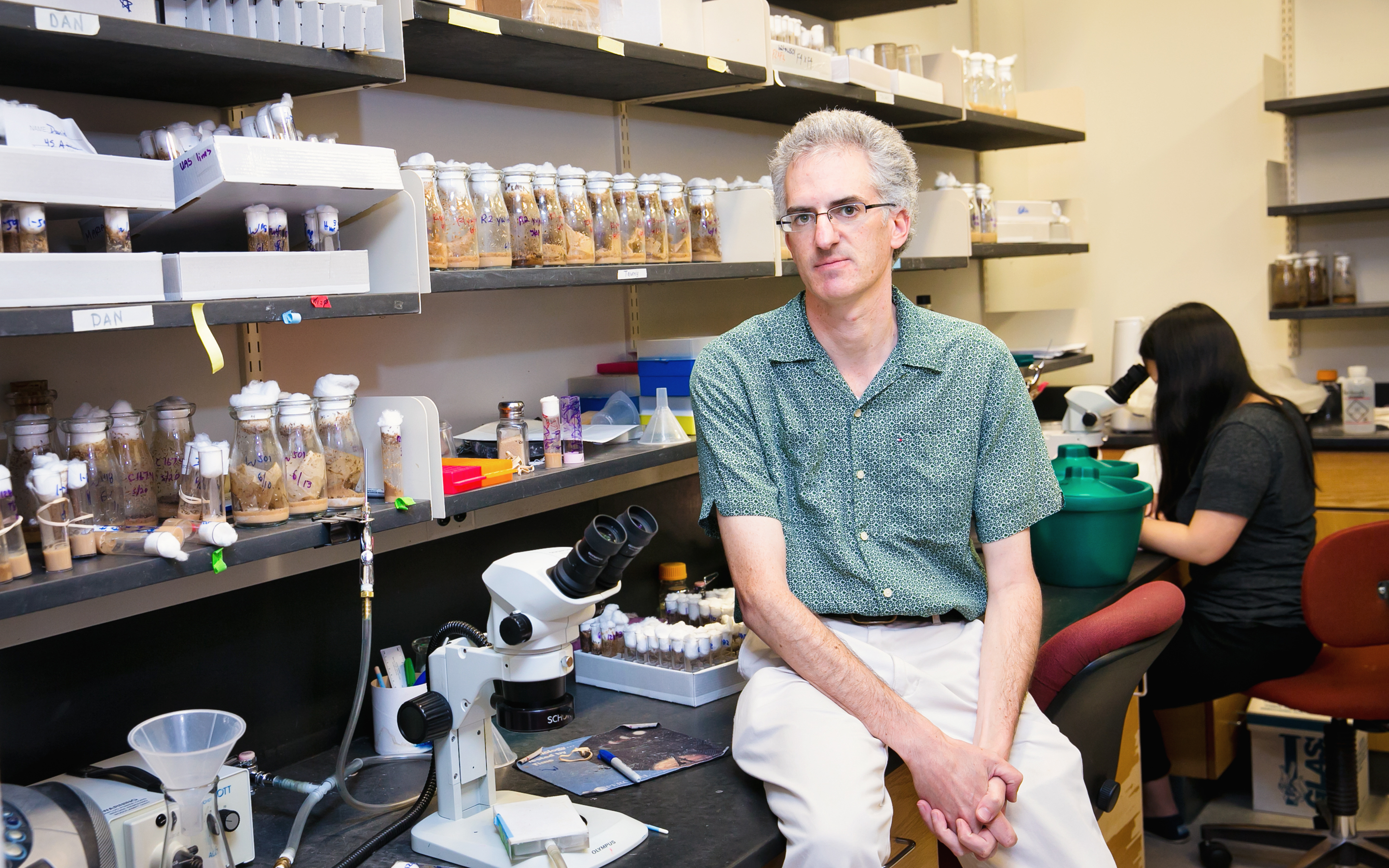Daniel Barbash's lab works on hybrid species of Drosophila to understand how genetic mutations work.