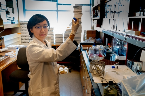 Chih-chun Lin, a Cornell inaugural Presidential Postdoc, is working with bacteria in Andrew Clack's lab.