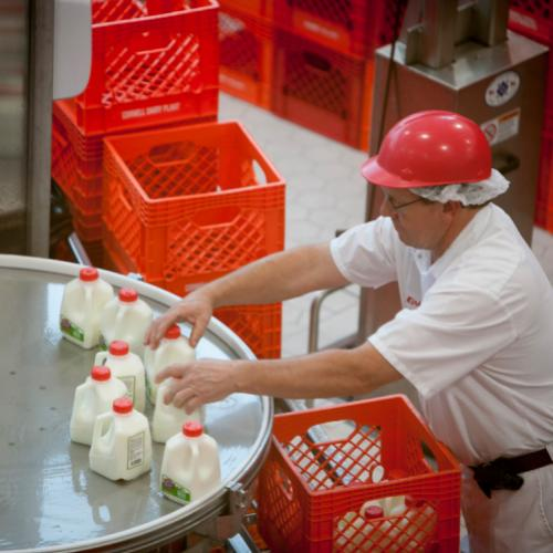 Quality Milk Production Services
