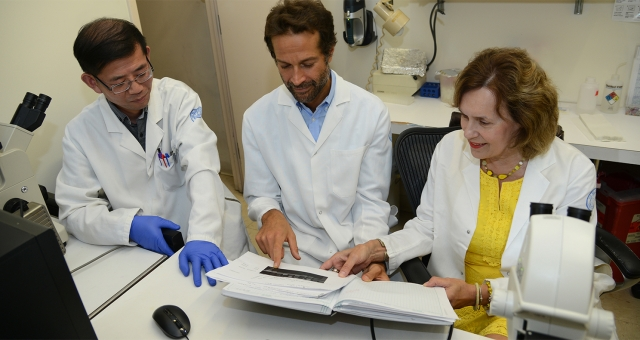 Lorraine Gudas and two colleagues discuss research results while in the lab.