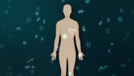 Mapping Signals in the Immune System